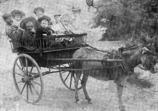 Topsey the Donkey pulling children in the cart